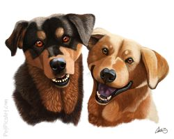 SPCA Long Timers- Daisy and Beau by CharReed