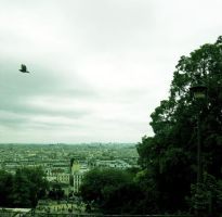 Paris, a vol d'oiseau by m0kaz