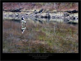 Shallow Waters by wulfster