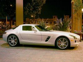 Mercedes SLS AMG Gullwing side by Partywave
