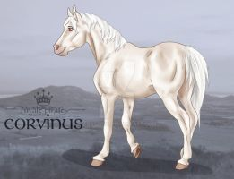 RPS Corvinus by abosz007