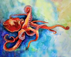 Octopus rubescens by hauntingmelody