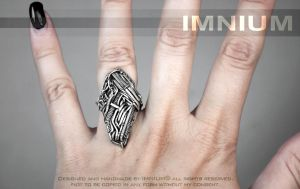 Skull Ring by IMNIUM