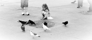 Talking with pigeons by AagaardDS