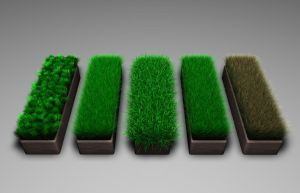 Cinema 4D - Gress-Grass by Neon-Monkey