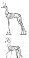 Unicorn Skeletal Studies 2 by Sky-Lily