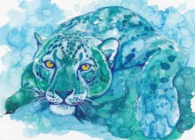 Snow Leopard by Aikya