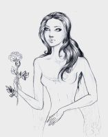 My mistery Belle  rose by Aqvila