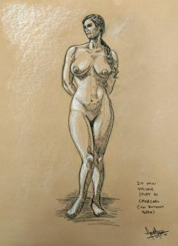 2015 20-Min. Light/Shadow Volume Study 2 of 2 by arielaguire