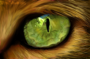 Realism Painting - Cat's Eye by Felisnix
