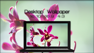 Orchid Passion Wallpaper. by jlynnxx