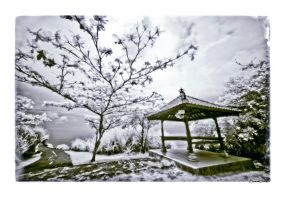 INFRARED: dream of my dreams by brumie