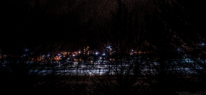 Night Trees HDR by ShadowAether