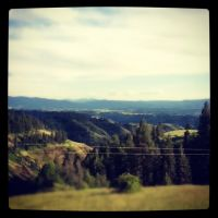 hills w/ trees by Ilovesmich