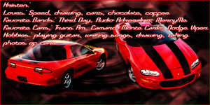 New Camaro ID by PunkIn-Kitty