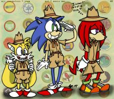 Sonic Heroes Are We by anniemae04