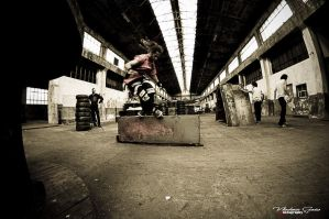 factory sk8in by concho