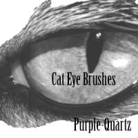 Cat Eye Brushes by Purple-Quartz-Brush