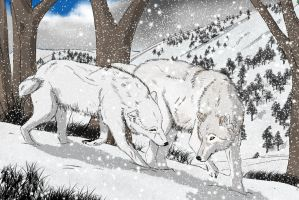 wolves .. remake by bravo9653