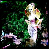Doon Hill Fairy 1 by elizabethunseelie
