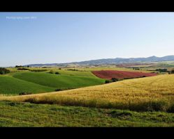 Beautiful colors of Tuscany by MelissaPhotos