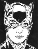 Catwoman by cosplayerart68