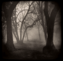 Invitation by intao