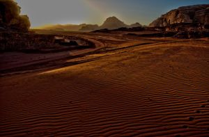 Desert awakes by forgottenson1