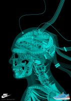 Head X-ray skull work (NIKE free run2) by animabase