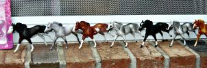 Breyer SM Running TB Conga by stormfjord