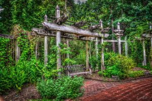Riverbanks Zoo and Garden: Garden Swing Bench HDR by Natures-Studio