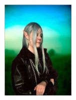 Vexen by something-wild