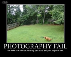 Photography Fail #2 -demotivation- by Dragunov-EX