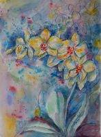 Phalaenopsis orchids by Lady-DreamArt