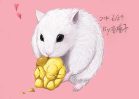 My pet hamster:D by aulauly7