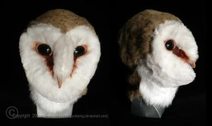 Barn Owl Mask by Luckwing