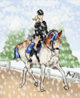 RF Royal Winter Event : Dressage by Shamrocky