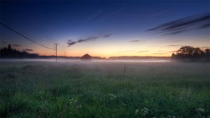 Country Field by Laazeri