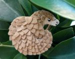 Pangolin fridge magnet by demiveemon