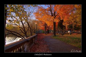 Colorfull Autumn by plbeaulieu