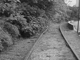 Overgrown Tracks by AiPFilmMaker