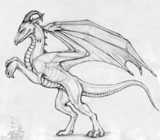 Oracle Dragon by Beast3