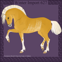 Winter Import 627 by ThatDenver