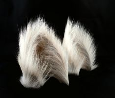 White Chai  Long Fur Cat Ears by StorytellerZero