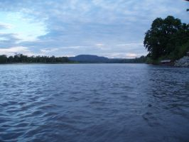 A River in the Amazon by mochichi07