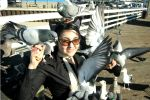 For the Love of Pigeons by Britain-Kitten