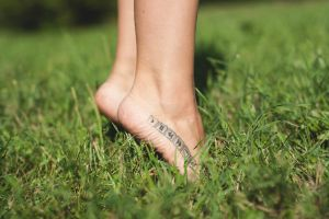 Stay on the Grass by Patholesia