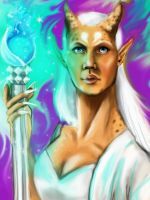 Sacred-elvish-priest by Torako-chan