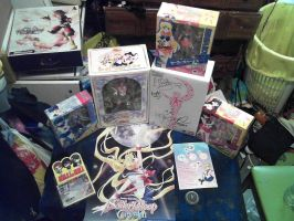 A Sailor Moon Expedition - Anime Expo by hachimitsu-ink