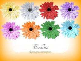 Set of Flower pngs by TinaLouiseUk